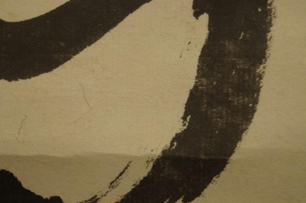 DELTEX Expert Rund Geflochtene Angel Schnur Dyneema 0,60mm 500M Grau