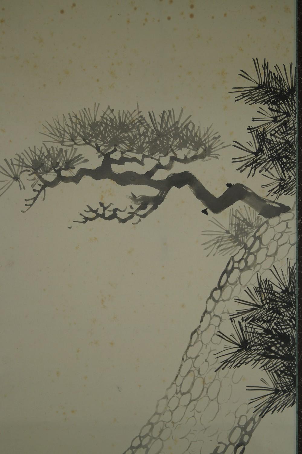 Alte Kiefer - Japanisches Rollbild (Kakejiku, Kakemono)