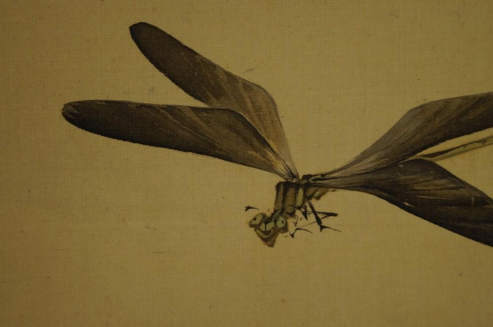 Libellen am Teich - Japanisches Rollbild (Kakejiku, Kakemono)