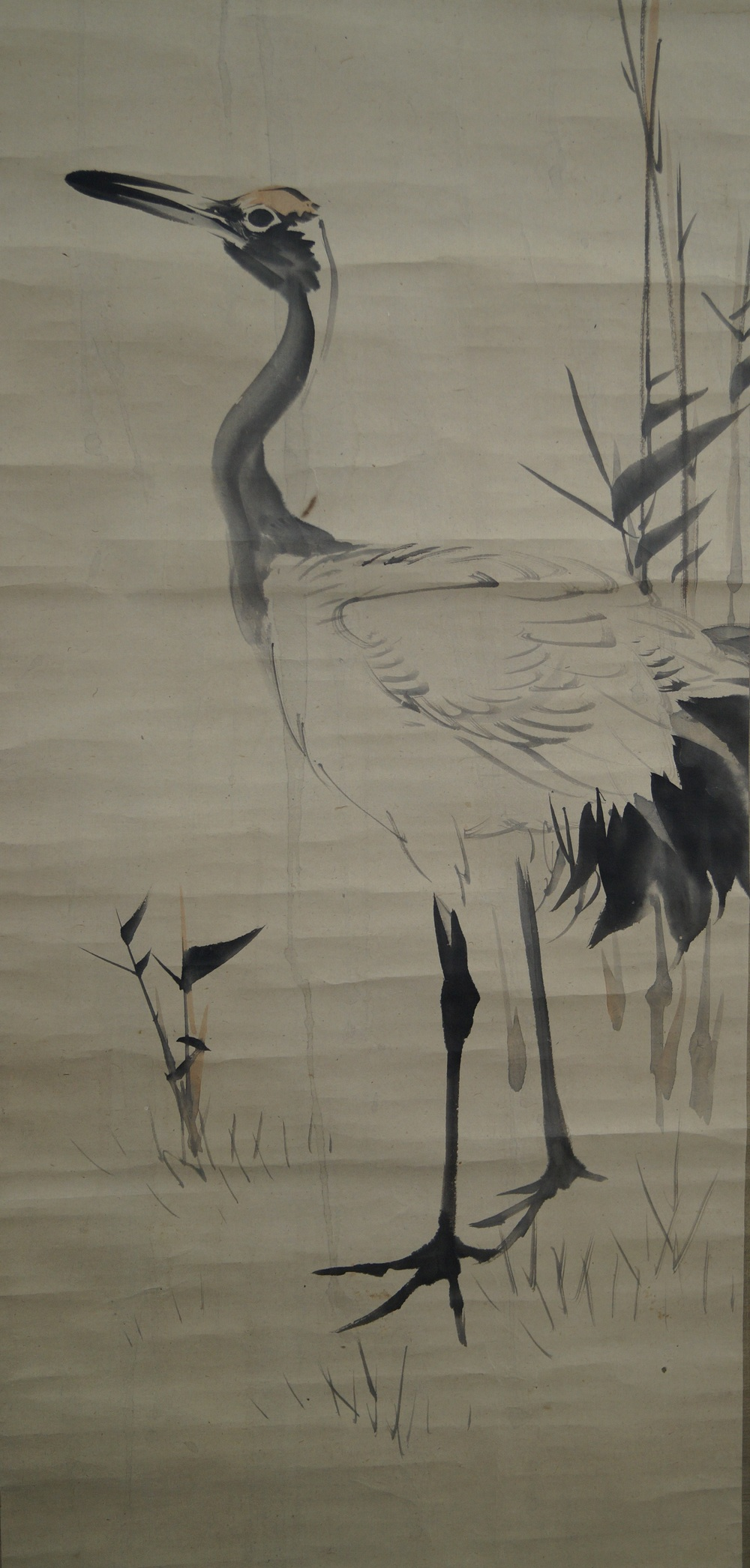 Ein Kranich - Chinesisches Rollgemälde (Kakejiku)
