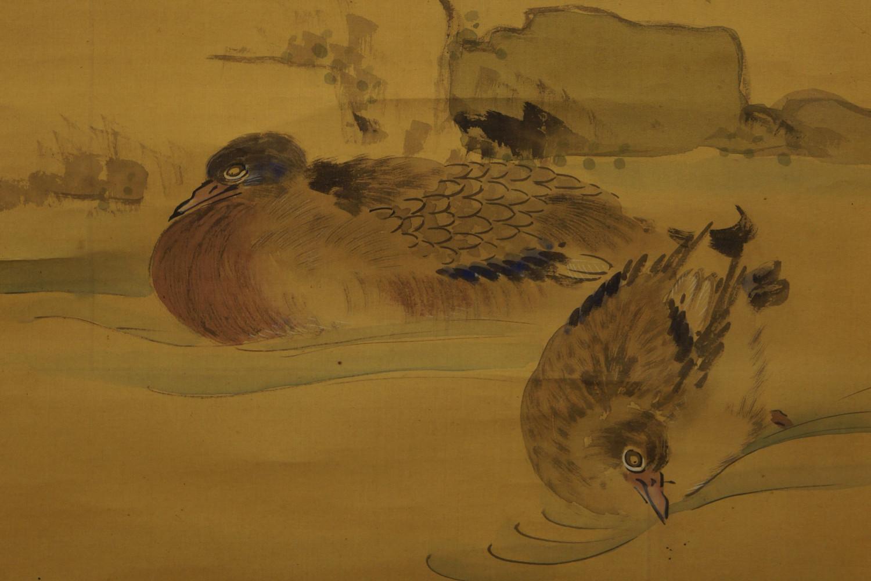 Vögel, Fische, Tiger und andere Tiere