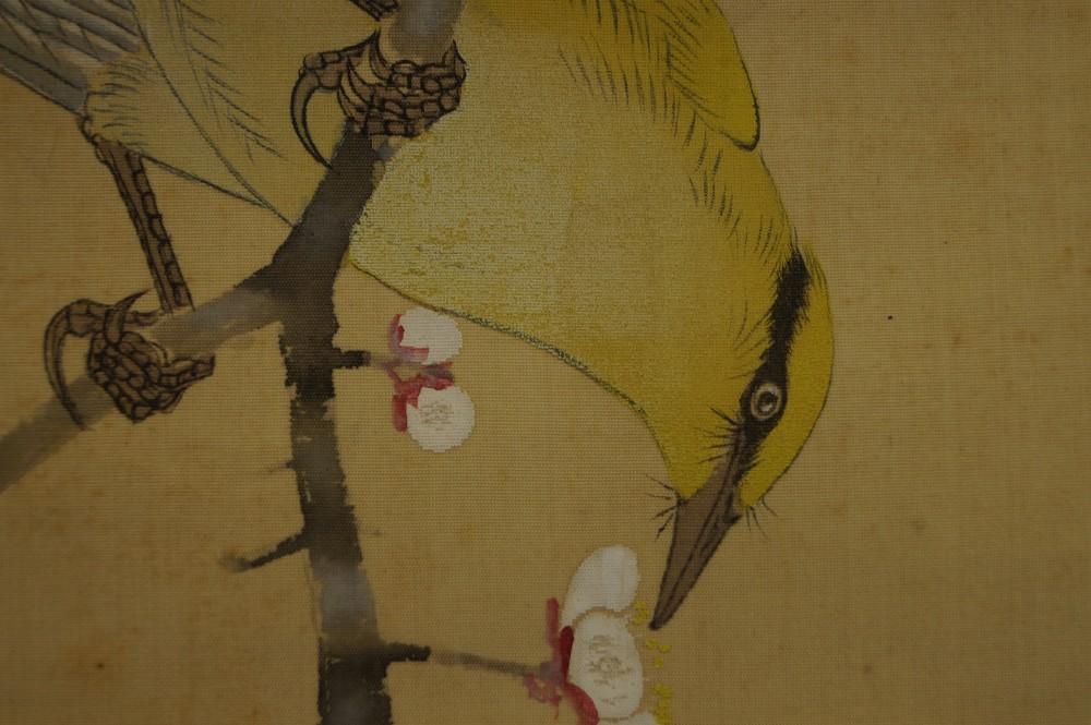 Vogel und Pflaumenblüten - Japanisches Rollbild (Kakejiku, Kakemono)