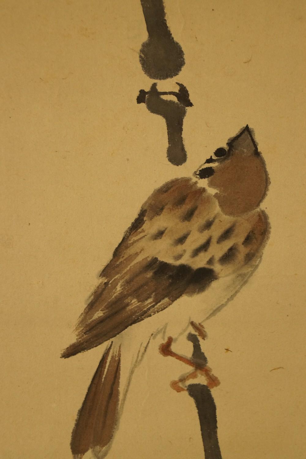 Spatz - Japanisches Rollbild (Kakejiku, Kakemono)