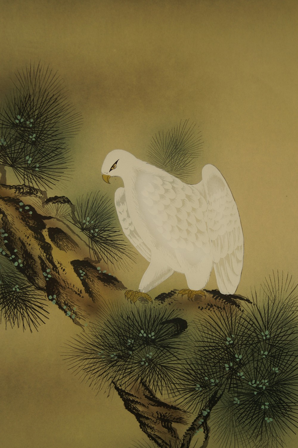 Falke auf der Kiefer - japanisches Rollgemälde (Kakejiku, Kakemono)