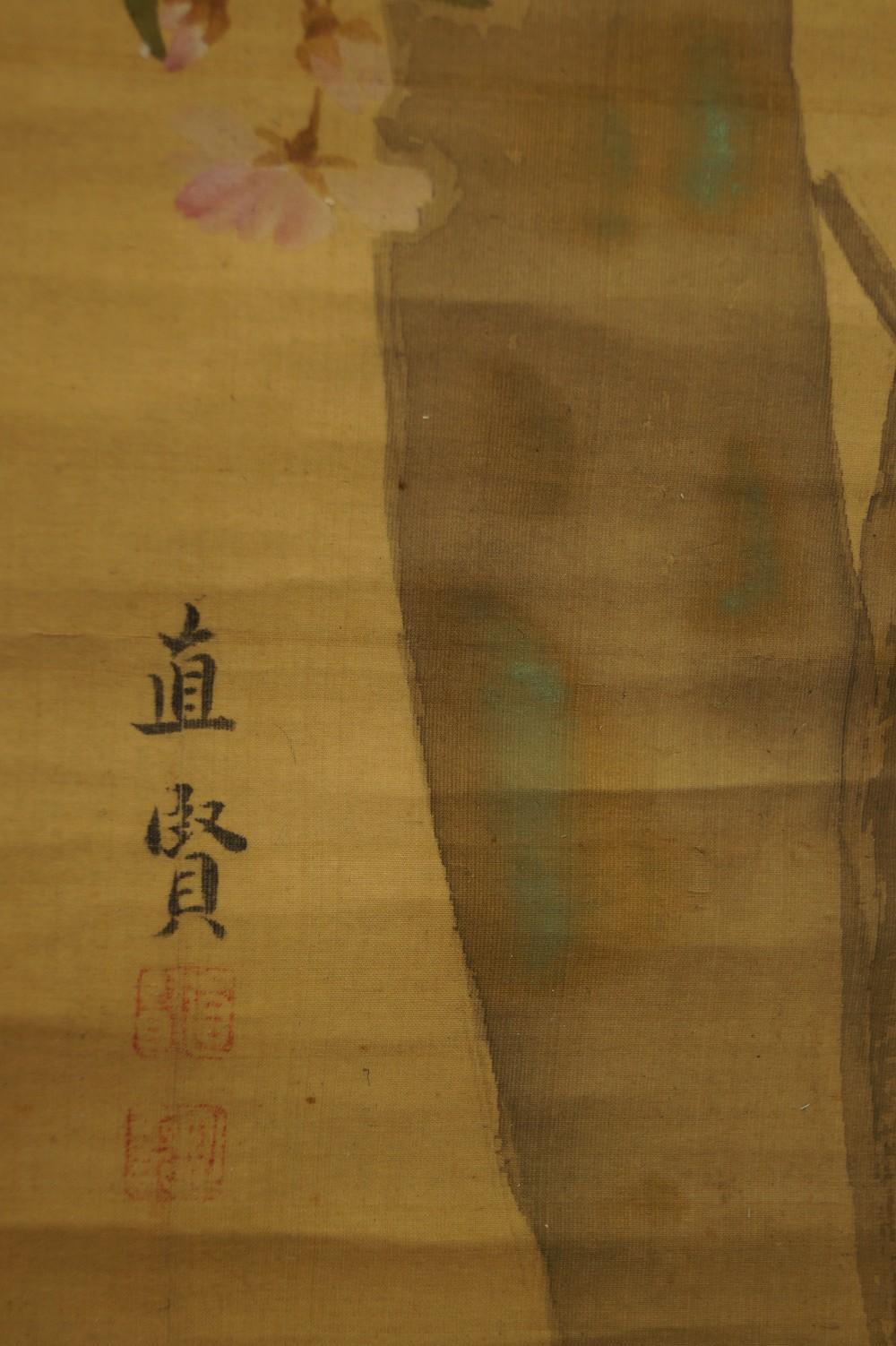 Specht am Kirschbaum - Japanisches Rollbild (Kakejiku, Kakemono)