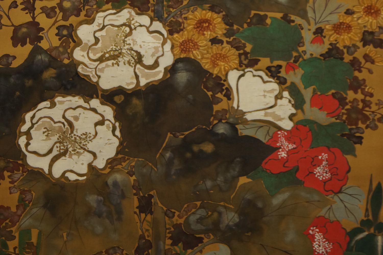 Blumen, Sakura und mehr