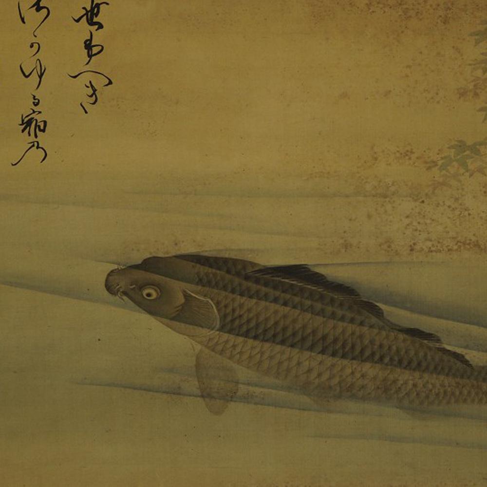 Karpfen im Wasser - Japanisches Rollbild (Kakejiku, Kakemono)