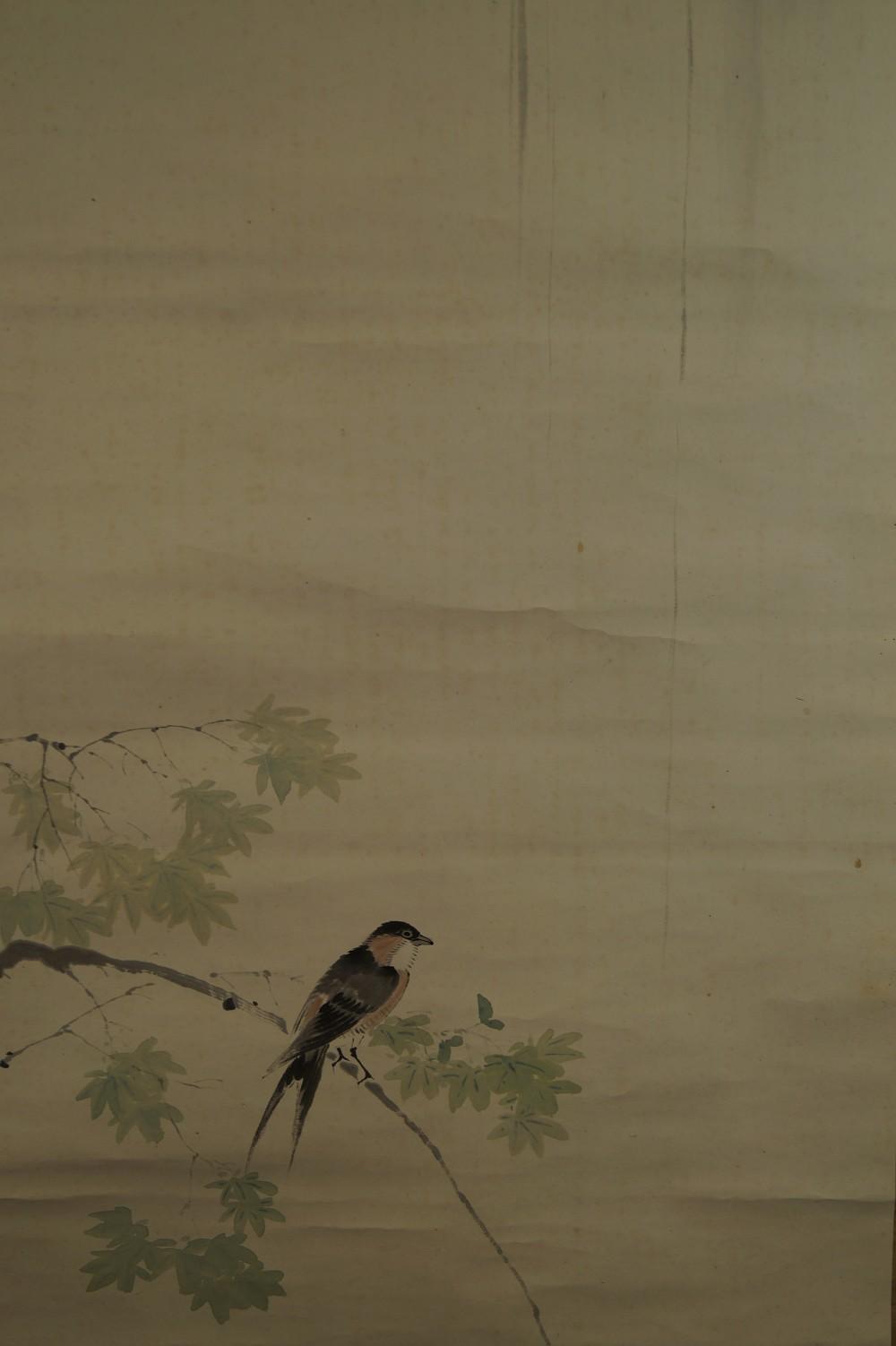 Vogel am Wasserfall - Japanisches Rollbild (Kakejiku, Kakemono)