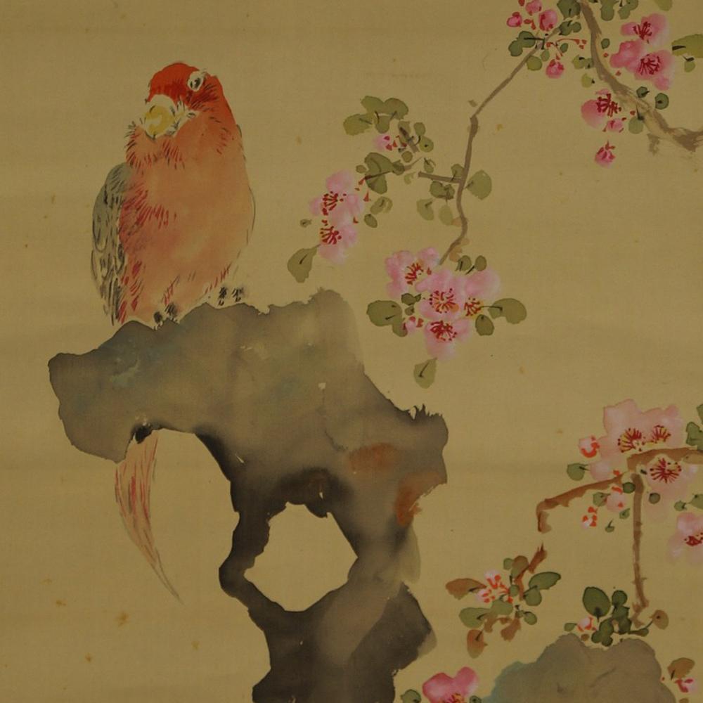 Papagai - Japanisches Rollbild (Kakejiku, Kakemono)